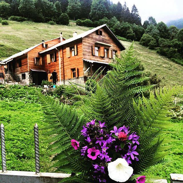 goboca dağ evi